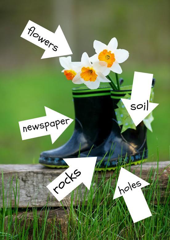 Shoe Gardening 101