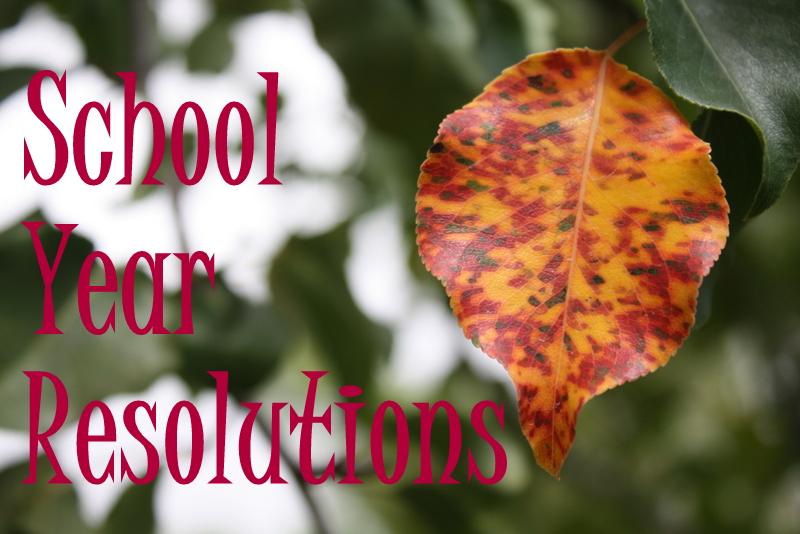 1-Fall leaf