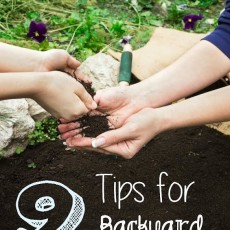 Tips For Backyard Composting